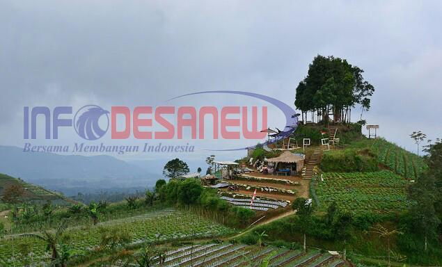 Keindahan Panorama Gardu Pandang Silancur Infodesanews Magelang Mangli Kab