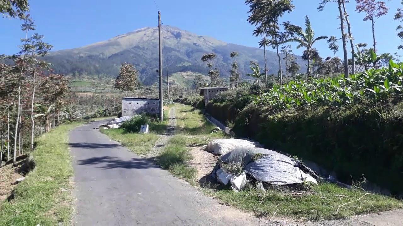 Pemandangan Desa Mangli Kec Kaliangkrik Kab Magelang Youtube Gardu Pandang