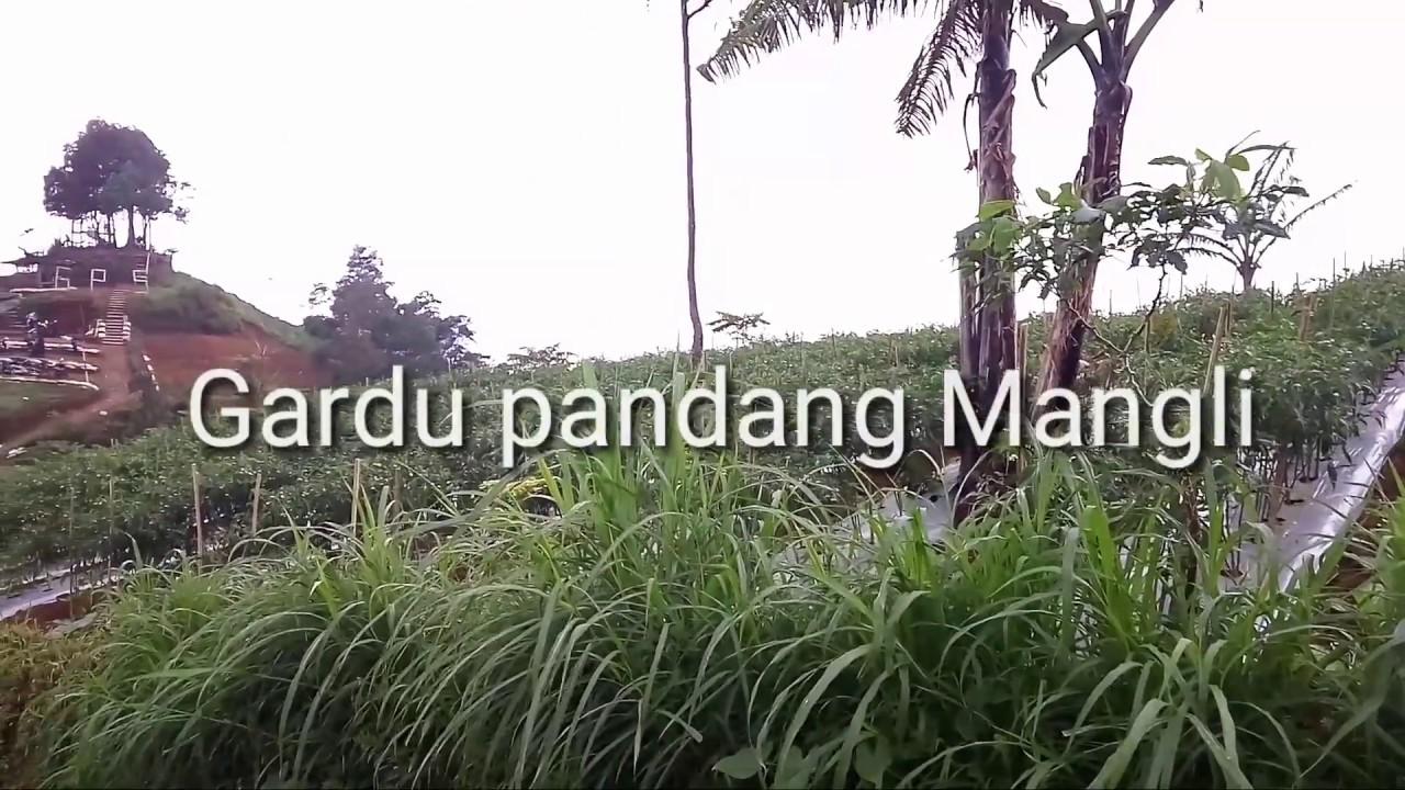 Wisata Magelang Desa Mangli Gardu Pandang Youtube Kab