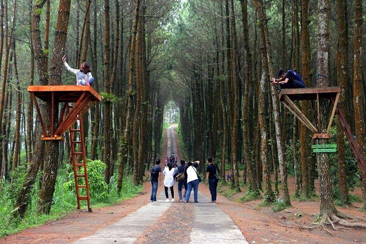 30 Wisata Magelang Biar Tripmu Gak Borobudur Melulu Gardu Pandang