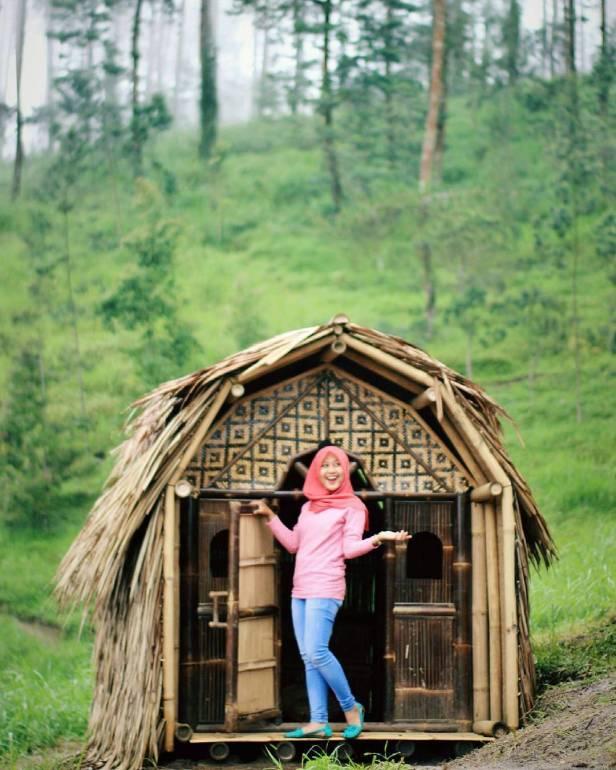 34 Tempat Wisata Hits Magelang Indopiknik Hutan Pinus Grenden 17493859