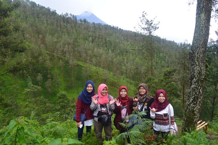 Asmarainjogja Medianya Sahabat Muda Berita Menyingkap Keindahan Hutan Pinus Grenden