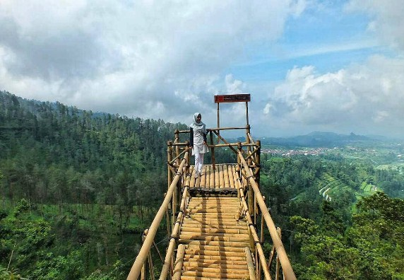 Desa Wisata Grenden Mempesona Netizenia Hutan Pinus Kab Magelang