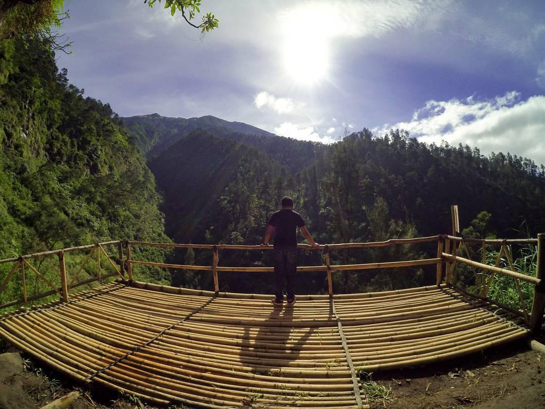 Explore Magelang Keindahan Hutan Pinus Grenden Kawasan Wisata Rekreasi Alam