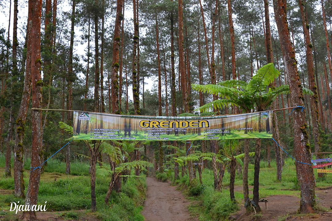 Grenden Hutan Pinus Lereng Merbabu Salah Satu Spot Wisata Kecamatan