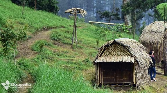 Hutan Pinus Grenden Desa Pakis Trip Quotes Eksapedia Rumah Kurcaci