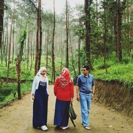 Hutan Pinus Grenden Lonely Pink Planet Kab Magelang