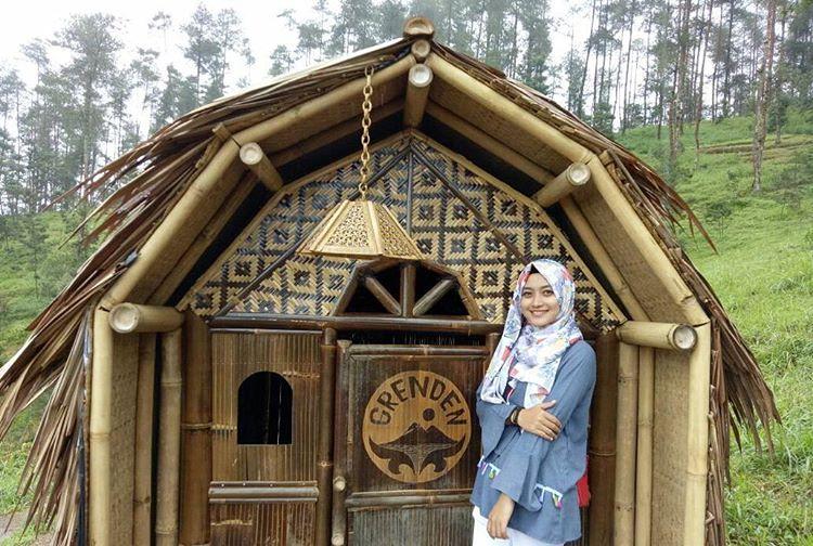 Wisata Alam Bukit Grenden Pakis Rumah Kurcaci Magelang Hutan Pinus