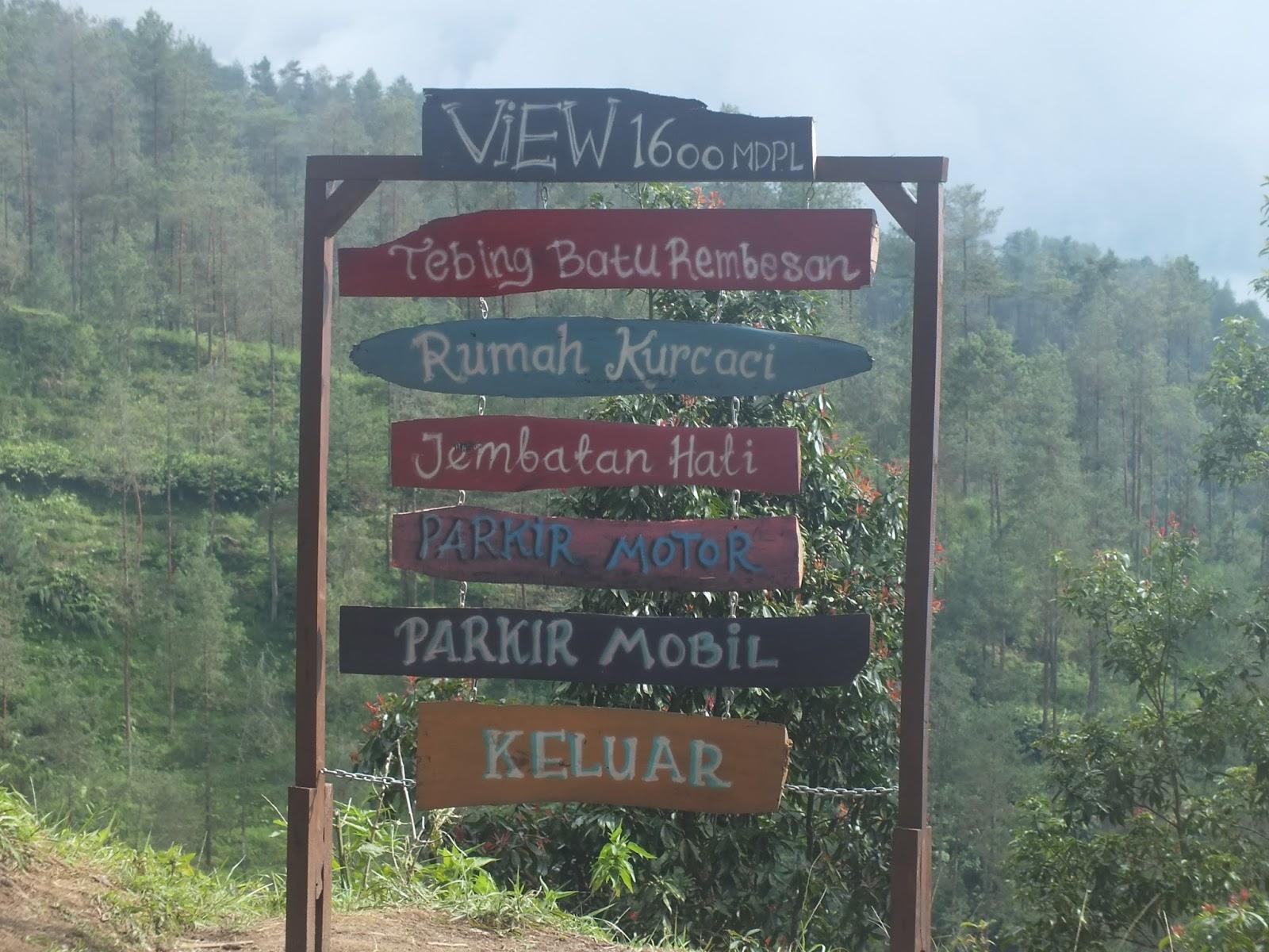 Explore Magelang Keindahan Hutan Pinus Grenden Januari 2017 Daftar View
