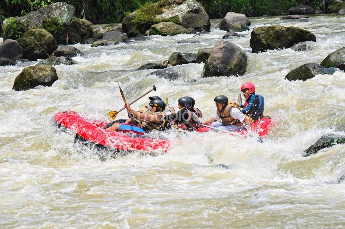 Arung Jeram Sungai Elo Mencumbu Derasnya Kaki Bukit Tidar Magelang