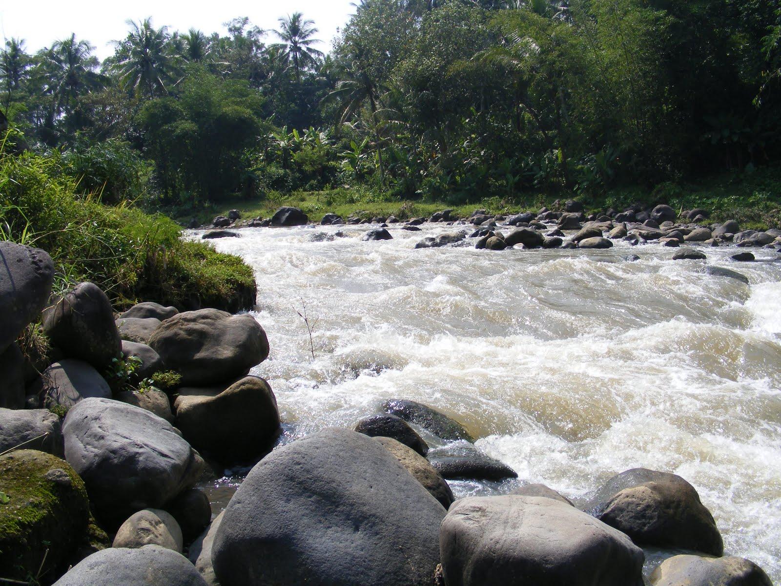 Sungai Elo Indonesia Nakarasido Hita Location River Excl Mendut Kab