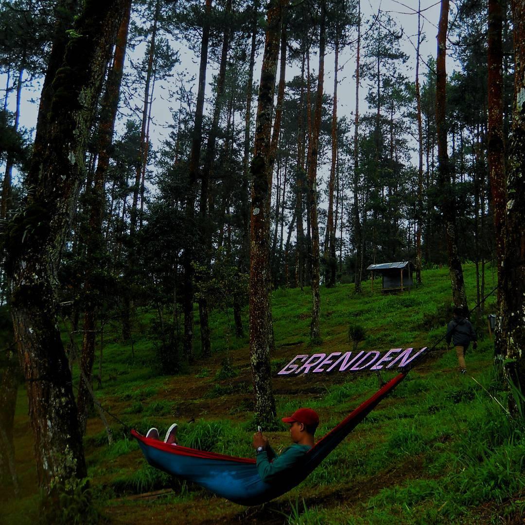30 Wisata Magelang Biar Tripmu Gak Borobudur Melulu 8 Hutan