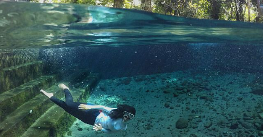 Sendang Maren Spot Underwater Keren Magelang Kab