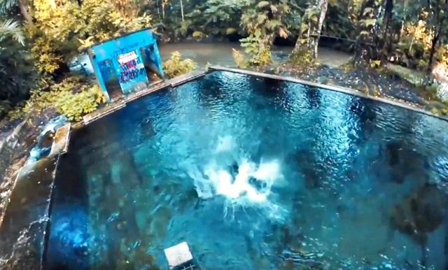 Sendang Maren Spot Underwater Sebening Kaca Weekend Mulu Tempat Rekomended