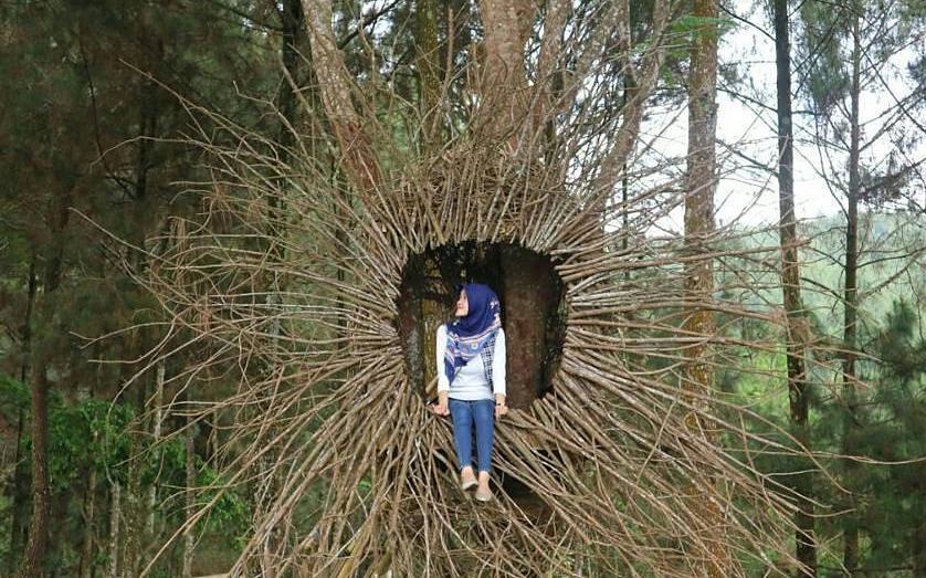 29 Tempat Wisata Magelang Terbaru Hits Dikunjungi Punthuk Mangir Taman