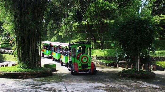 Berlibur Taman Kyai Langgeng Magelang Berbagai Wahana Permainan Keluarga Menunggu