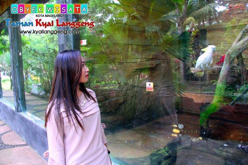 Galeri Taman Wisata Kyai Langgeng Satwa Kota Magelang Kiai Kab