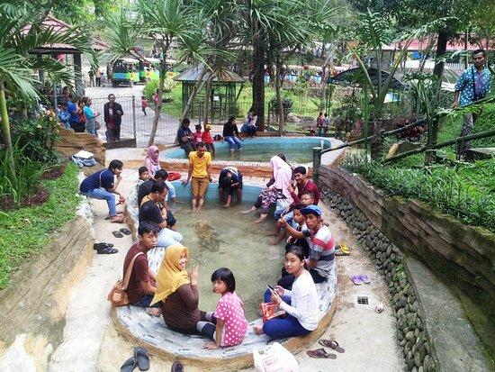 Terapi Ikan Taman Kyai Langgeng Kota Magelang Picture Park Kiai