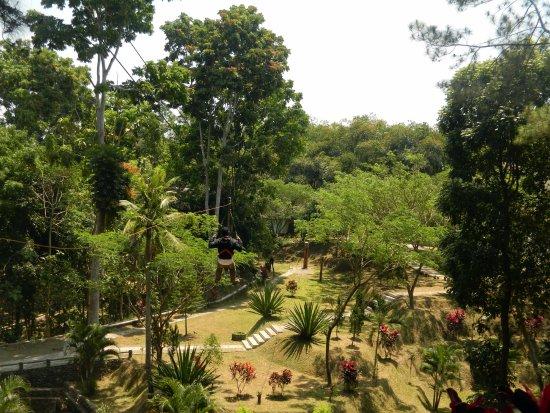 Wahana Flying Fox Taman Kyai Langgeng Kota Magelang Picture Park