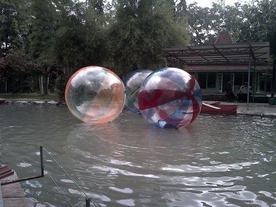 Wahana Water Ball Taman Kyai Langgeng Kota Magelang Picture Park
