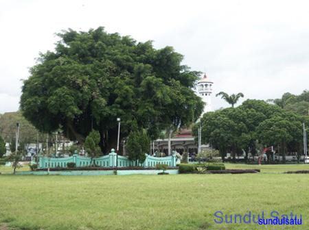 Soendoel Blog Alun Magetan Pohon Beringin Kabupaten Kab