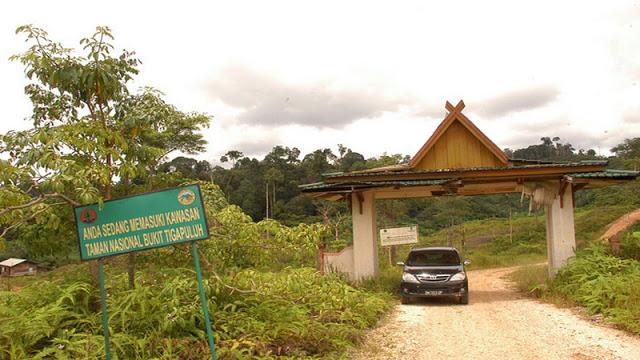 Harga Tiket Wisata Masuk Tempat Riau Bukit Tiga Puluh Hamparan