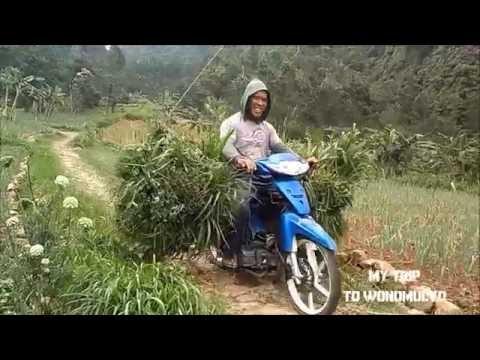 Explore Magetan Wonomulyo Youtube Rumah Hobbit Kab