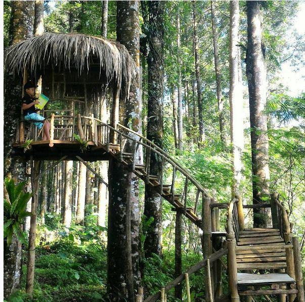 Nggak Bandung Rumah Ala Hobbit Purbalingga Foto Instagram Wisata Wonomulyo