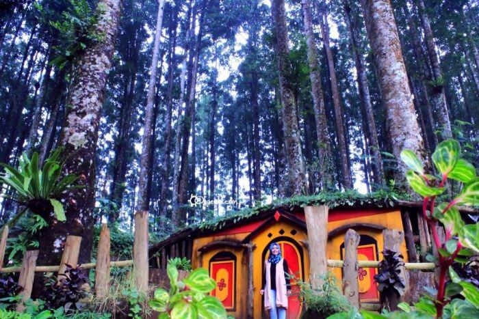 Nggak Bandung Rumah Ala Hobbit Purbalingga Foto Olipeoile Wonomulyo Kab