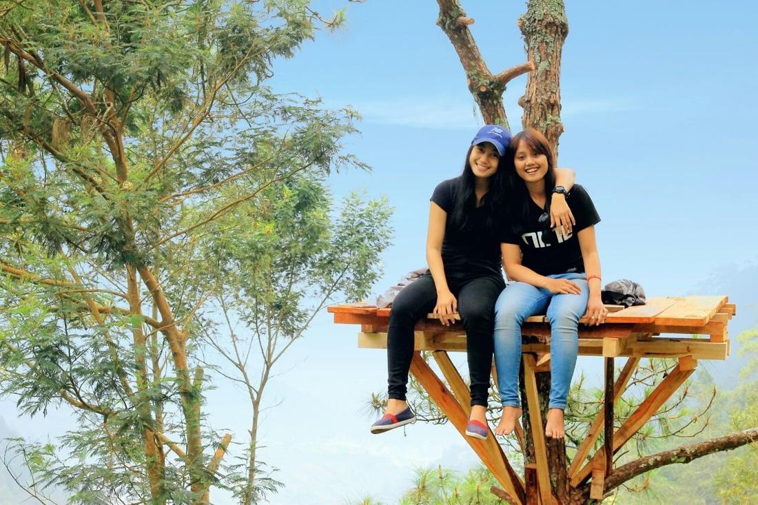 Wahana Wisata Nuansa Rumah Pohon Sejuk Udaranya Dingin Suhu Daerahnya