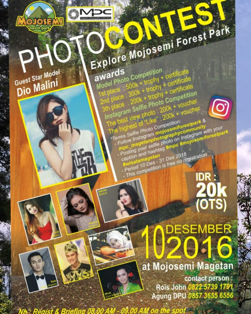 Mojosemi Forest Park Magetan East Java Indonesia Photo Contest Taman