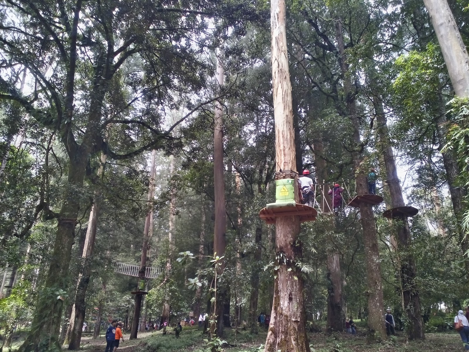 Weekend Mojosemi Forest Park Season Highrope Skywalk Flyingfox Taman Hutan