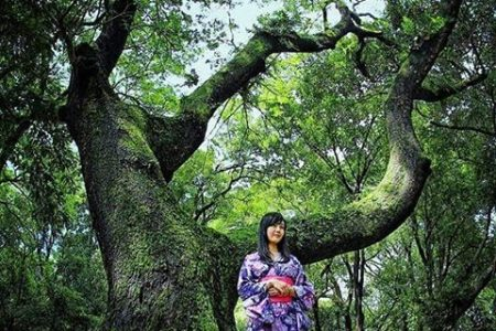 Keindahan Wisata Taman Ria Maospati Magetan Kab