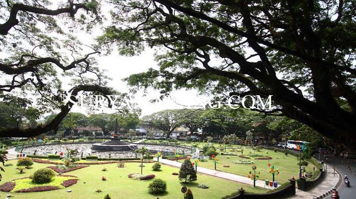 Pohon Kota Malang Dikukuhkan Sebagai Tumbuhan Heritage Alun Tugu Balai