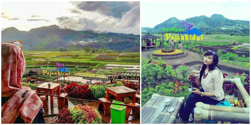 13 Cafe Restoran Romantis Malang Pemandangan Spektakuler Berada Tengah Persawahan