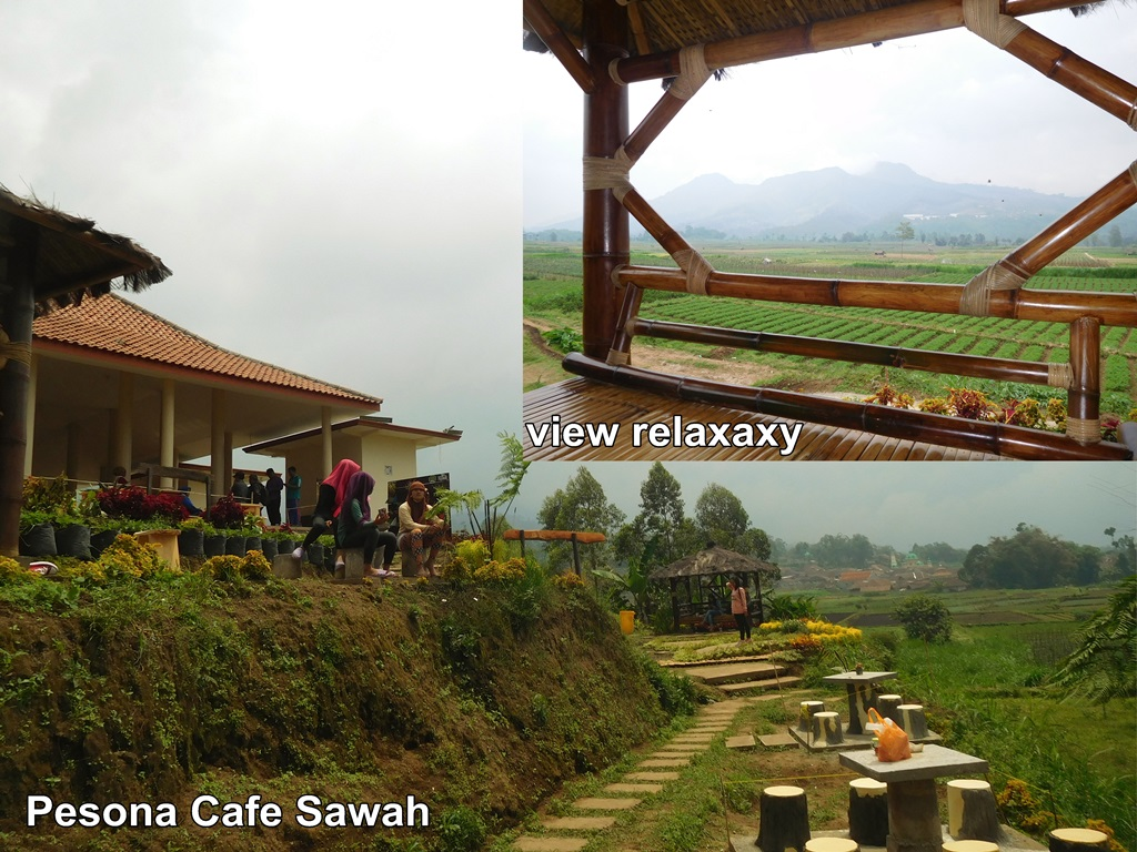 Cafe Sawah Desa Pujon Kidul Sajikan Pesona Alam Pojok Kiri