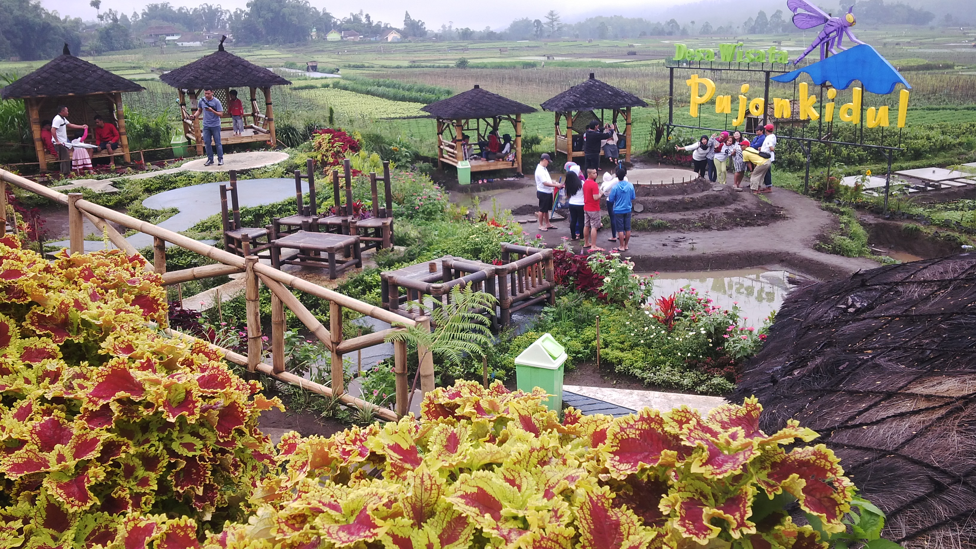 Cafe Sawah Malang Destinasi Bebas Polusi Terakota Eksotisme Pujon Kidul