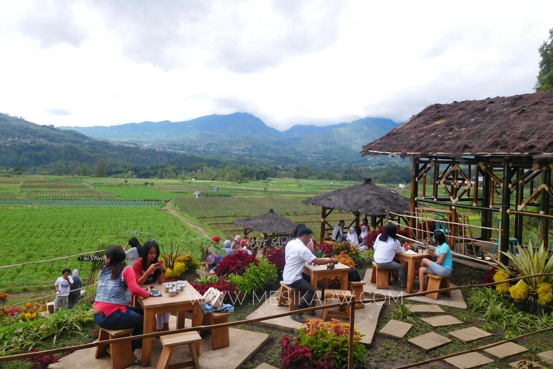 Cafe Sawah Pujon Kidul Batu Asyik Nongkrong Tengah Maklum Magnet