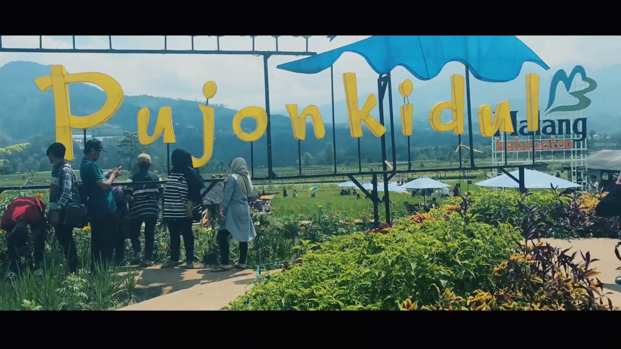 Cafe Sawah Pujon Kidul Kab Malang Youtube