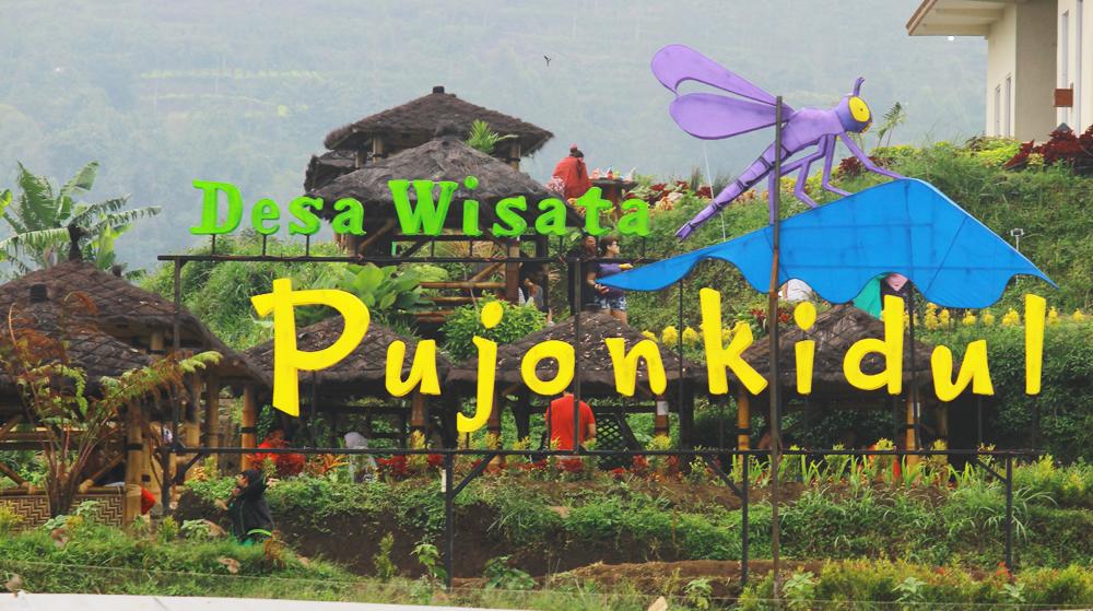 Cafe Sawah Pujon Kidul Koranmemo Berita Wisata Hiburan Kab Malang