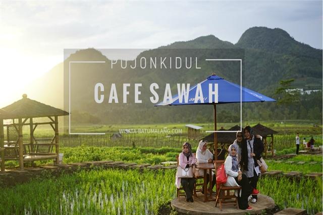 Cafe Sawah Pujon Kidul Malang Open Trip Paket Wisata Batu