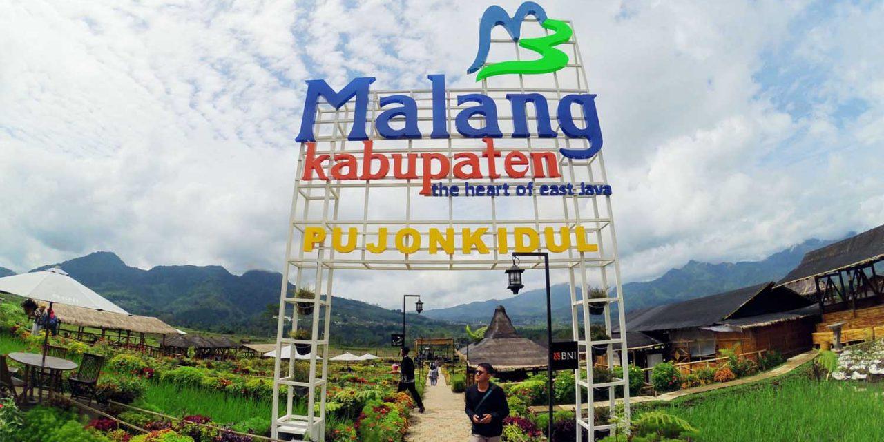 Cafe Sawah Pujon Kidul Malang Sehari Kampung Wisata Kab