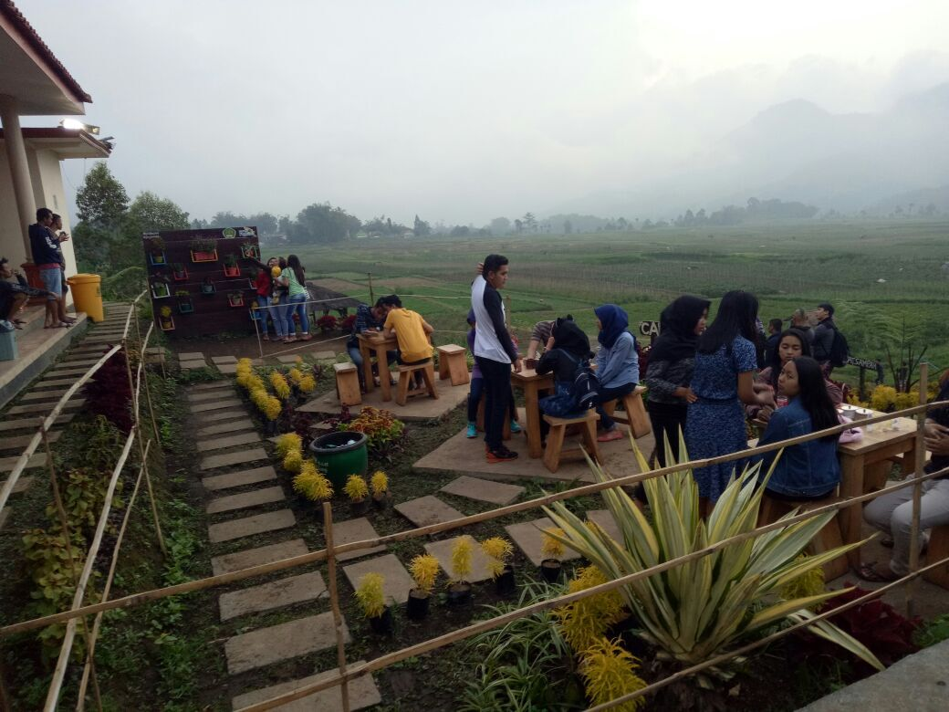 Cafe Sawah Rest Area Instagramable Pujon Kidul Malang Travel Kab