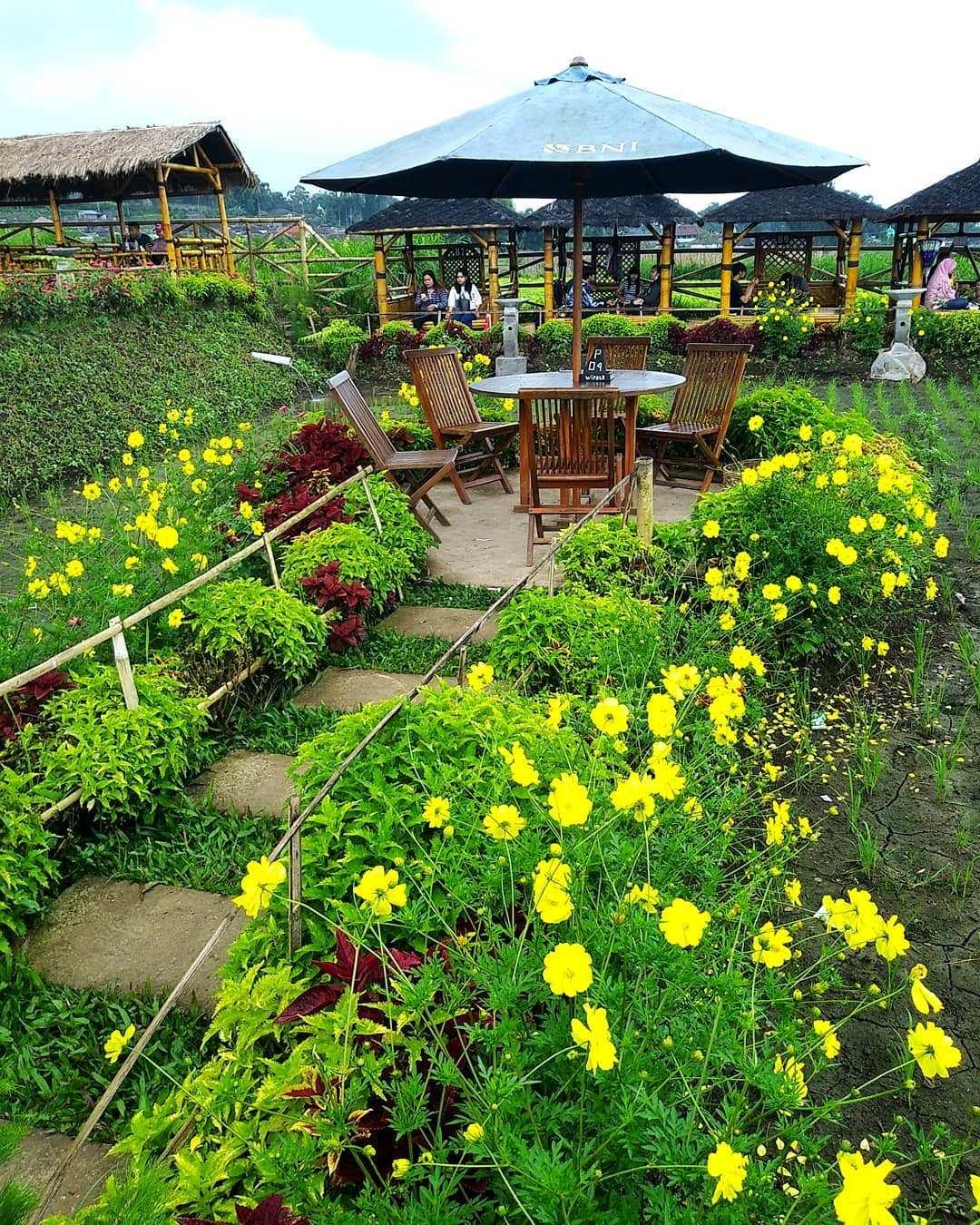 Desa Wisata Pujon Kidul Kabupaten Malang 14 Faktanya Makan Tengah