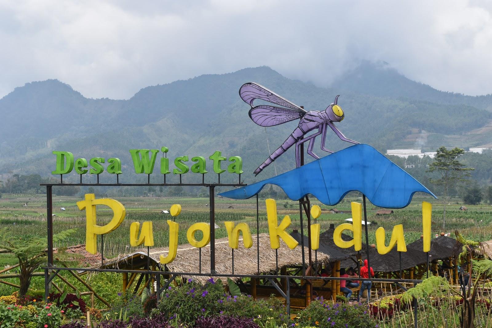 Ericha Fernanda Cafe Sawah Desa Wisata Pujon Kidul Kab Malang