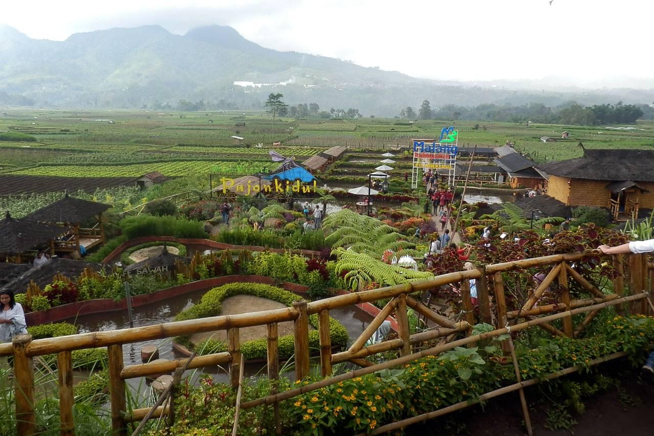 Foto Cafe Sawah Bni Berdayakan Ekonomi Pujon Kidul 9 Kab