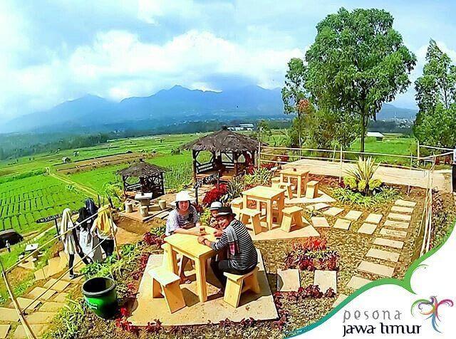 Harga Tiket Masuk Menu Cafe Sawah Pujon Malang Jatim Kidul