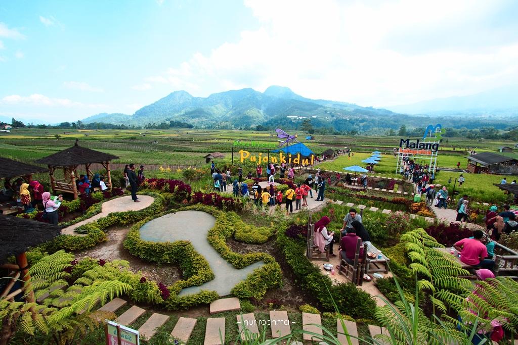 Lovely Mom Cafe Sawah Desa Wisata Pujon Kidul Malang Kab