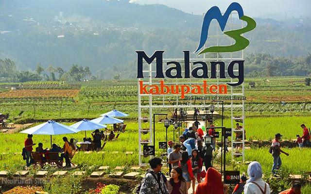 Makan Siang Kafe Sawah Pujon Kidul Malang Nasirullah Sitam 5