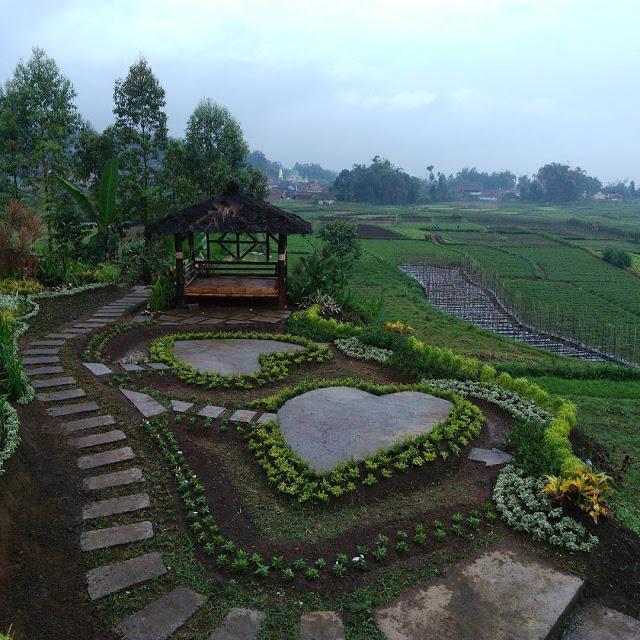 Pujon Kidul Desa Wisata Keindahan Alam Menyegarkan Malang Cafe Sawah